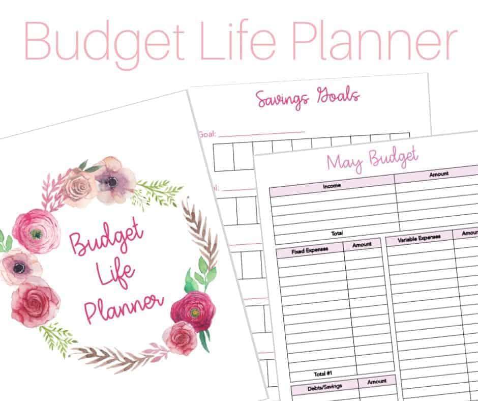 Budget Life Planner Image 1