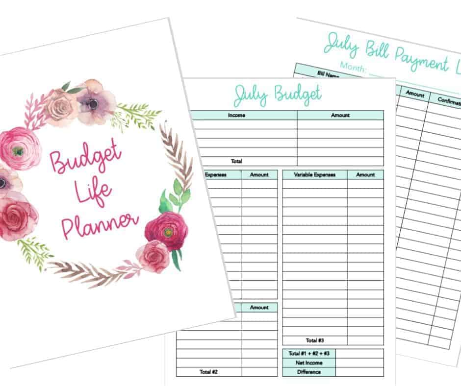 Budget Life Planner Image 3