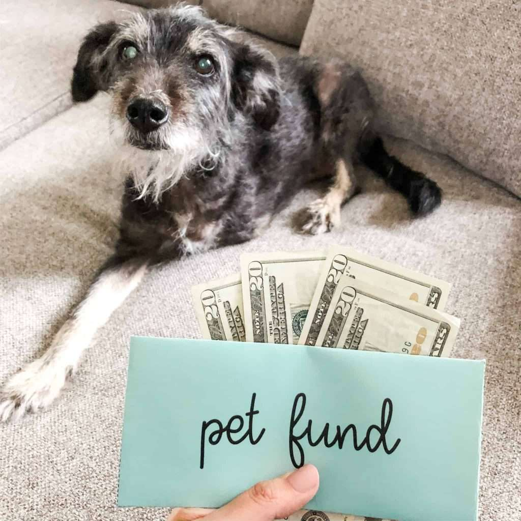 Pet Care Sinking Fund