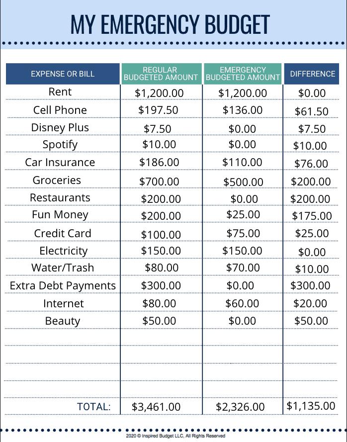 Emergency Budget Example