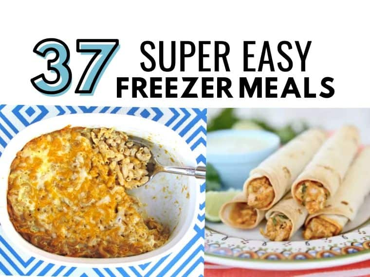 37 Easy Freezer Meals